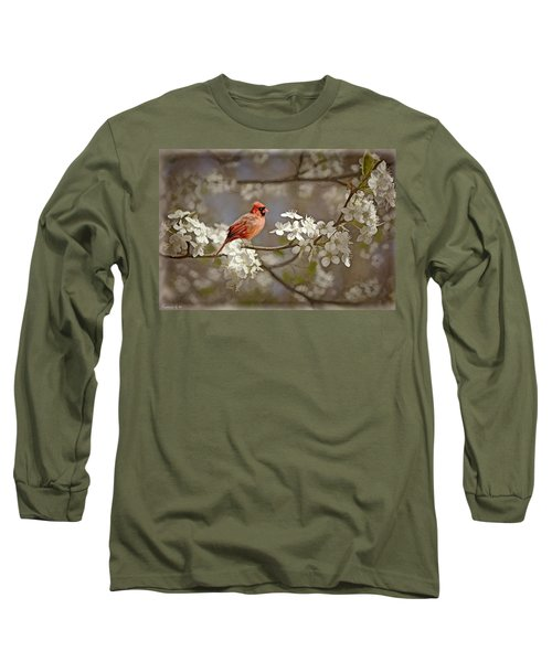 Cardinal And Blossoms Long Sleeve T-Shirt by Bonnie Willis