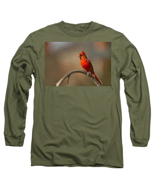 Long Sleeve T-Shirt featuring the photograph Cardinal by Jerry Gammon