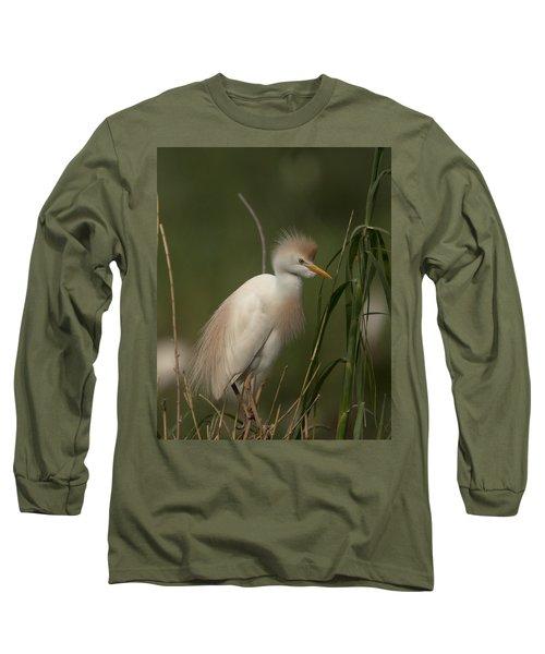 Cattle Egret Long Sleeve T-Shirt
