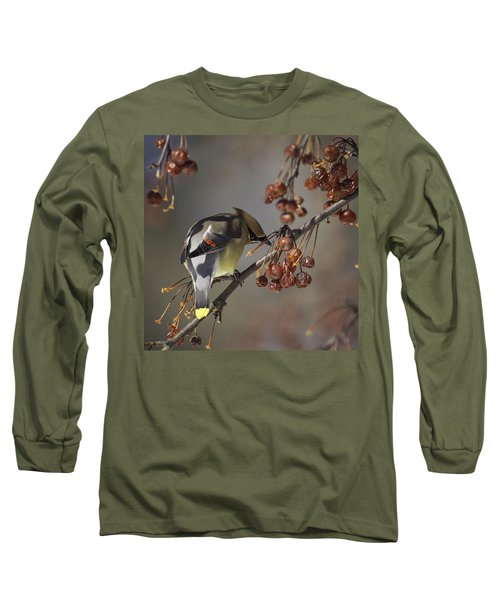 Cedar Waxwing Eating Berries 7 Long Sleeve T-Shirt