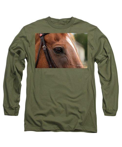 Chestnut Horse Eye Long Sleeve T-Shirt
