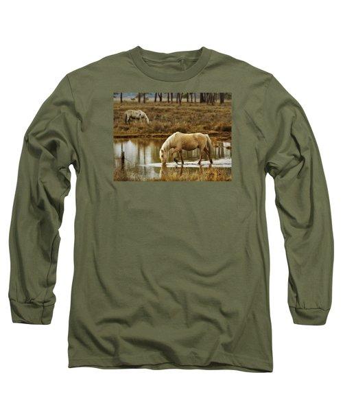 Chincoteague Gold Long Sleeve T-Shirt by Joan Davis