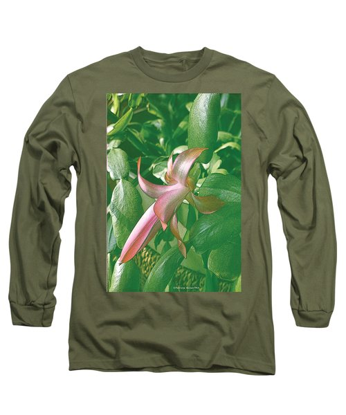 Christmas Cactus Blooms In May Long Sleeve T-Shirt