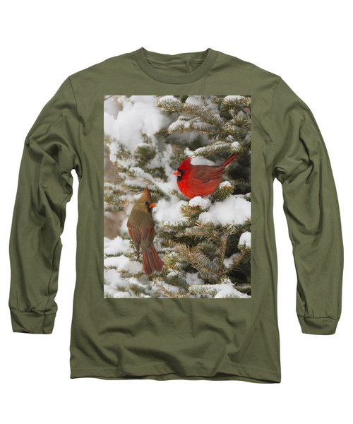 Christmas Card With Cardinals Long Sleeve T-Shirt by Mircea Costina Photography