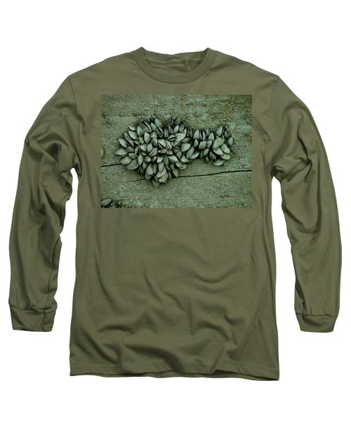 Clam Shells Long Sleeve T-Shirt