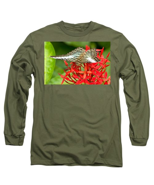Clipper Butterfly Long Sleeve T-Shirt by Scott Carruthers