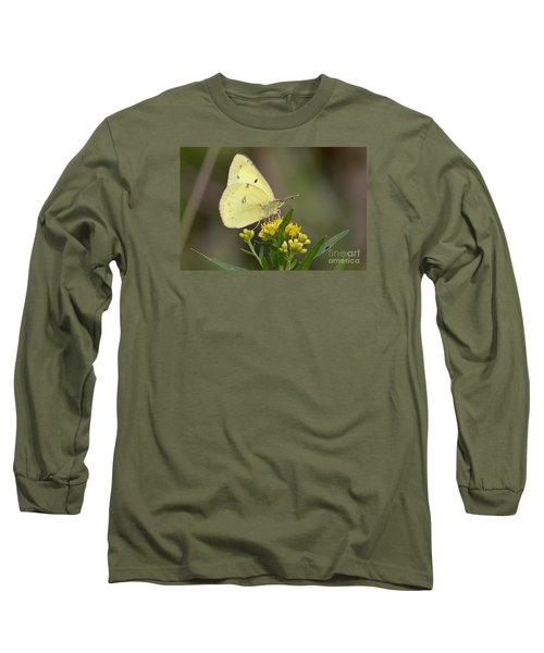Clouded Sulphur Long Sleeve T-Shirt by Randy Bodkins