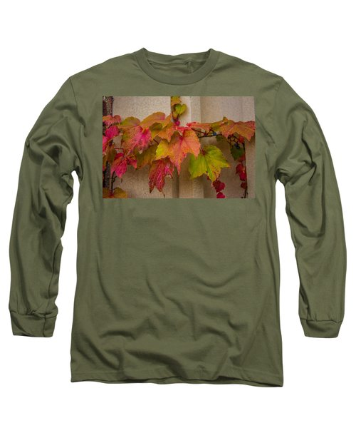 Colorful Ivy Long Sleeve T-Shirt