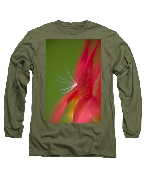 Long Sleeve T-Shirt featuring the photograph Columbine Fairy by Brenda Jacobs