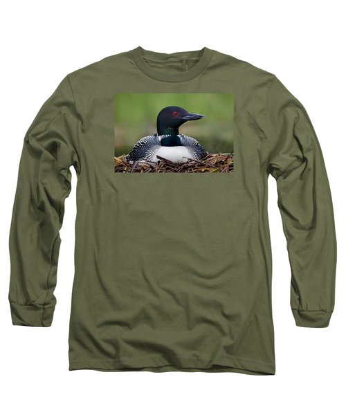 Common Loon On Nest British Columbia Long Sleeve T-Shirt by Connor Stefanison