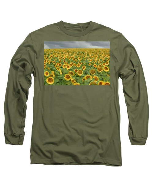 Common Sunflower Helianthus Annuus Long Sleeve T-Shirt