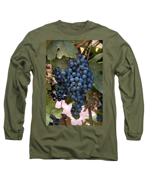 Concord Grapes Long Sleeve T-Shirt by Leeon Pezok