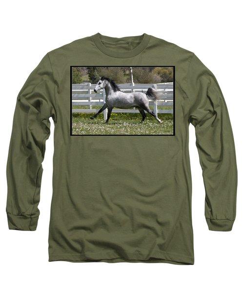 Conversano Catalina IIi Long Sleeve T-Shirt by Wes and Dotty Weber