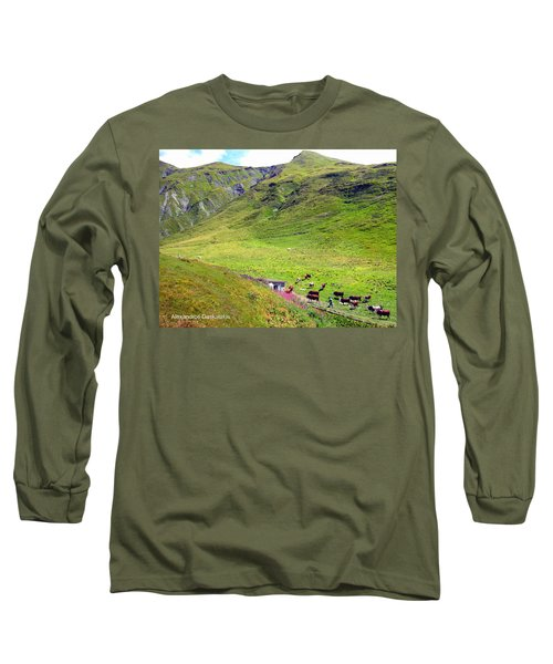 Cows In A Valley Long Sleeve T-Shirt