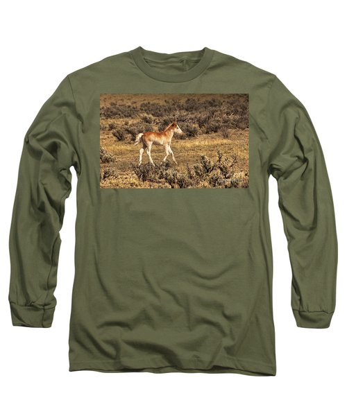 Cute Colt Wild Horse On Navajo Indian Reservation  Long Sleeve T-Shirt by Jerry Cowart