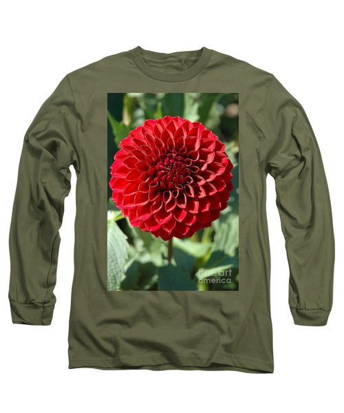 Long Sleeve T-Shirt featuring the photograph Dahlia Xii by Christiane Hellner-OBrien