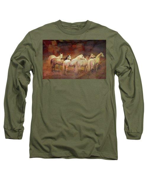 Divas Long Sleeve T-Shirt