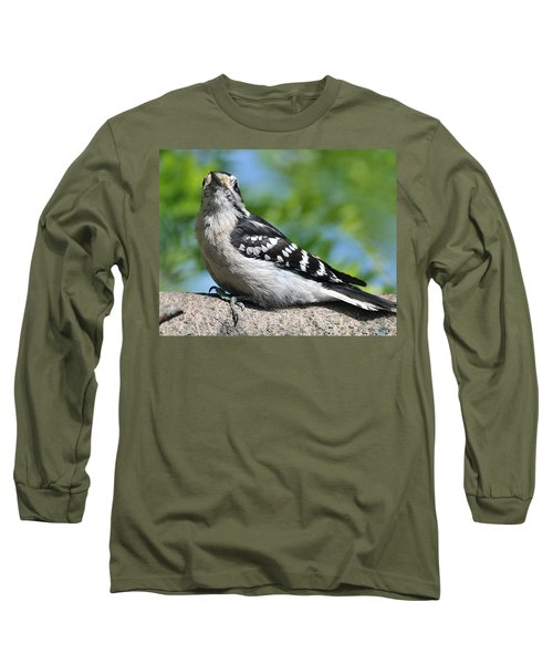 Downy Woodpecker 302 Long Sleeve T-Shirt