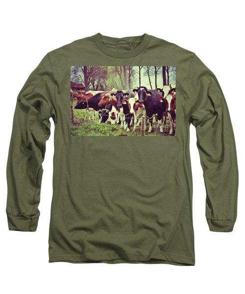 Dutch Cows Long Sleeve T-Shirt by Nick  Biemans