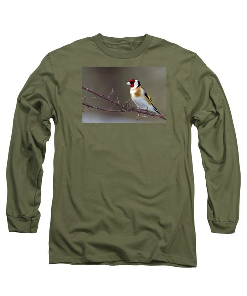 European Goldfinch  Long Sleeve T-Shirt by Torbjorn Swenelius