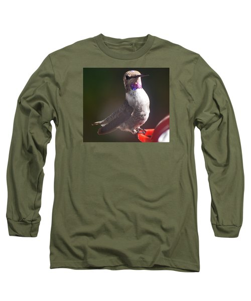 Long Sleeve T-Shirt featuring the photograph Female Anna On Perch by Jay Milo