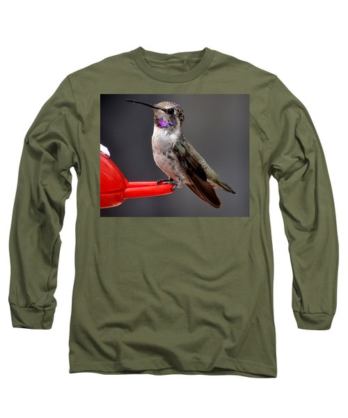 Long Sleeve T-Shirt featuring the photograph Female Anna's Hummingbird On Perch Posing For Her Supper by Jay Milo
