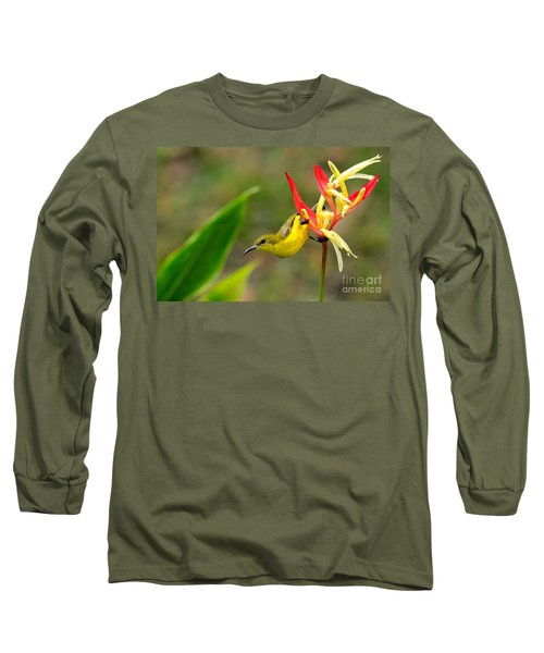 Female Olive Backed Sunbird Clings To Heliconia Plant Flower Singapore Long Sleeve T-Shirt by Imran Ahmed