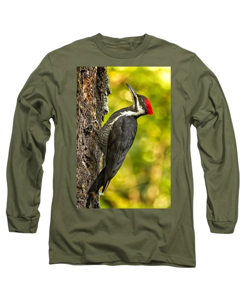 Female Pileated Woodpecker No. 2 Long Sleeve T-Shirt by Belinda Greb