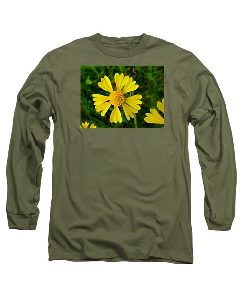Wild Fine Leaved Sneezeweed Long Sleeve T-Shirt by William Tanneberger