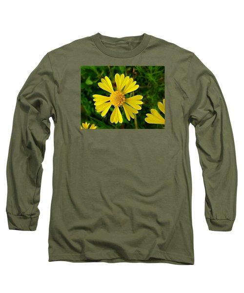 Wild Fine Leaved Sneezeweed Long Sleeve T-Shirt