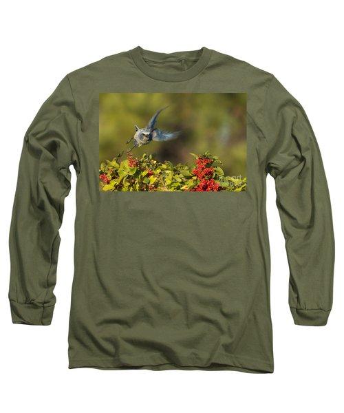 Flying Florida Scrub Jay Photo Long Sleeve T-Shirt
