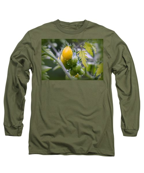 Fruits Of Our Labours Long Sleeve T-Shirt