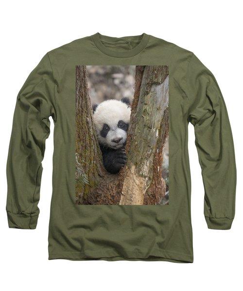 Giant Panda Cub Bifengxia Panda Base Long Sleeve T-Shirt
