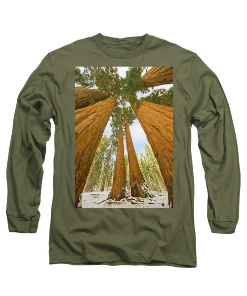 Giant Sequoias And First Snow Long Sleeve T-Shirt