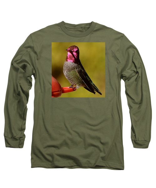 Long Sleeve T-Shirt featuring the photograph Glimmering Red Headed Mail Anna by Jay Milo