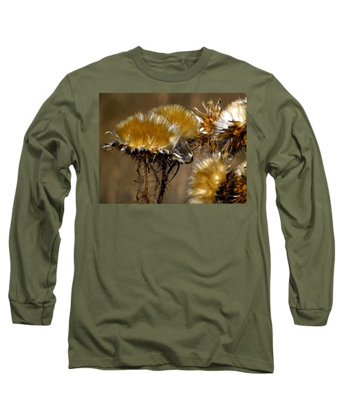 Golden Thistle Long Sleeve T-Shirt by Bill Gallagher
