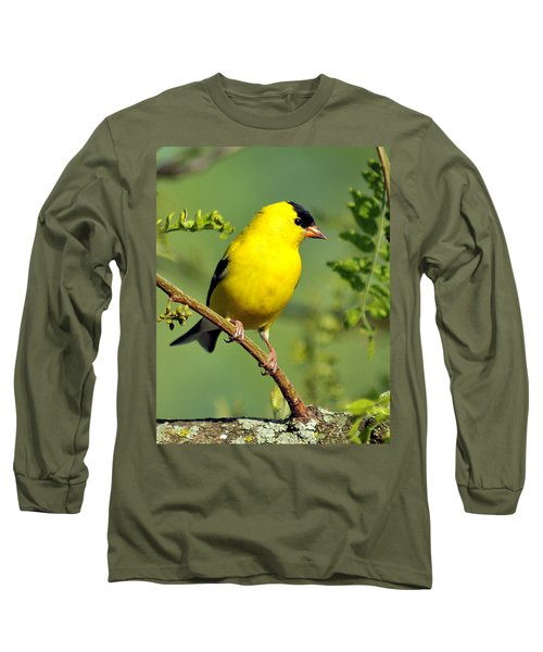 Goldfinch 328 Long Sleeve T-Shirt