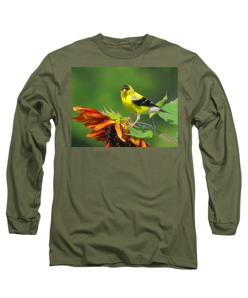 Long Sleeve T-Shirt featuring the photograph Goldfinch Pose by Dianne Cowen