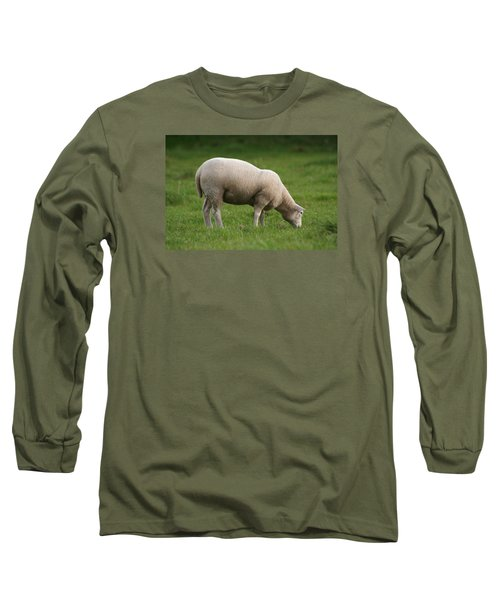 Grazing Sheep Long Sleeve T-Shirt