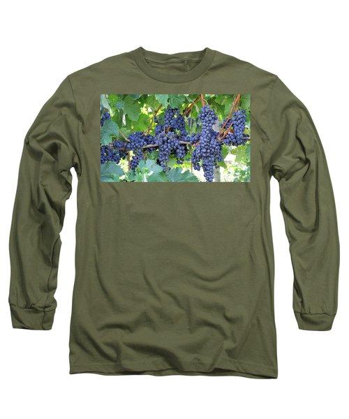 Great Lakes Vineyard Near Lake Erie Long Sleeve T-Shirt by Steve Archbold