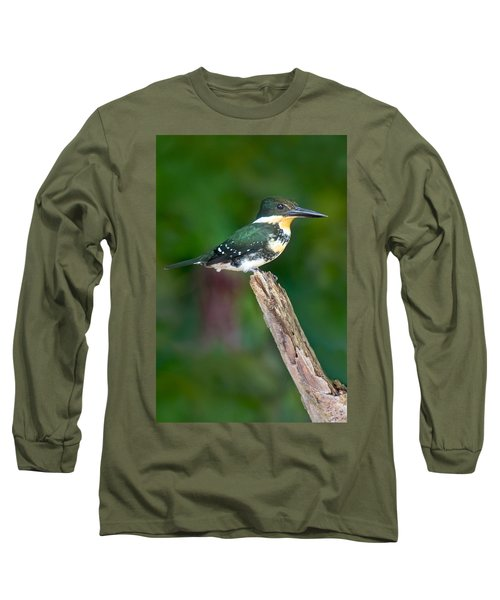 Green Kingfisher Chloroceryle Long Sleeve T-Shirt by Panoramic Images