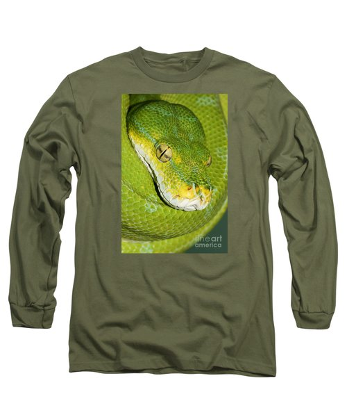 Long Sleeve T-Shirt featuring the photograph Green Tree Python #2 by Judy Whitton