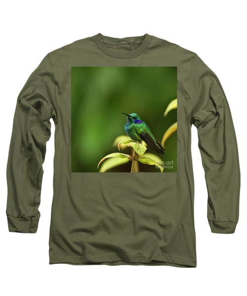 Green Violetear Hummingbird Long Sleeve T-Shirt by Heiko Koehrer-Wagner
