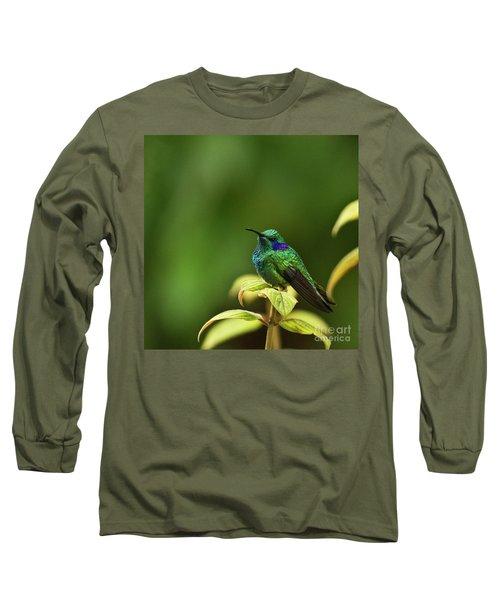 Green Violetear Hummingbird Long Sleeve T-Shirt