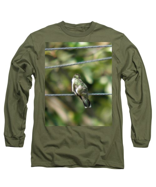 Long Sleeve T-Shirt featuring the photograph Grooming Hummer by Nick Kirby