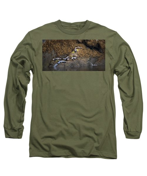 Harbor Seals Long Sleeve T-Shirt
