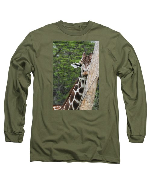 Long Sleeve T-Shirt featuring the photograph Hay Not Just For Horses by Judy Whitton