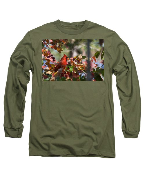 Hiding Away Long Sleeve T-Shirt by Linda Unger