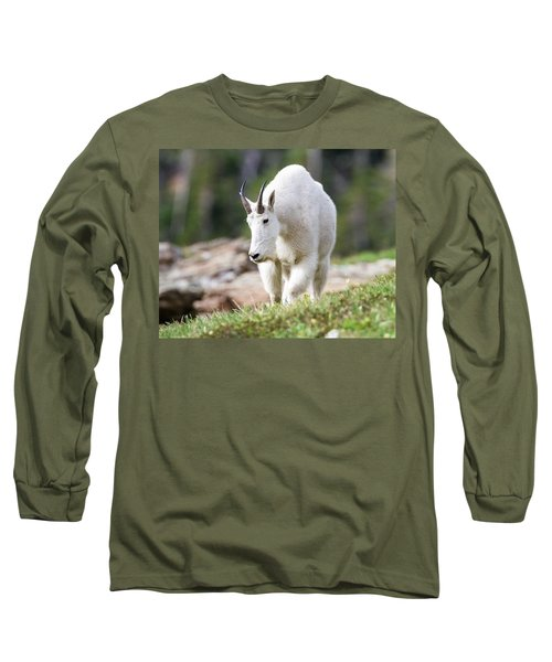 Long Sleeve T-Shirt featuring the photograph High Country Mountain Goat by Jack Bell