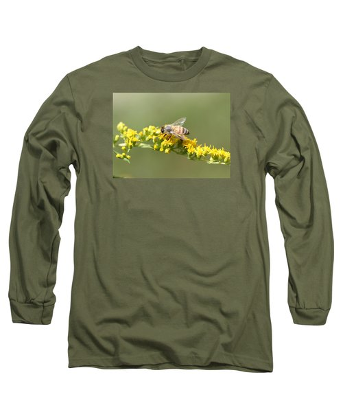 Honeybee On Goldenrod Twig Long Sleeve T-Shirt by Lucinda VanVleck